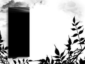 Black Label by Zsuzsanna Kilián